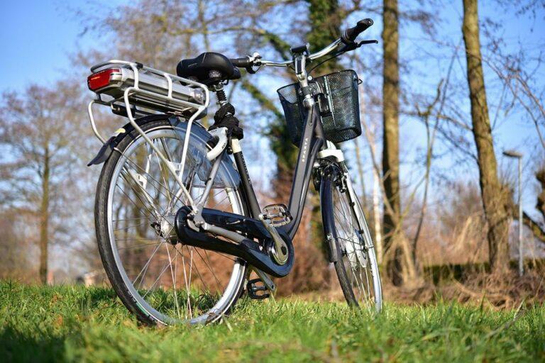 Motivations et poids : critères de choix d'un vélo électrique